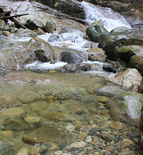 Stream demonstrating the HIOS principle of water